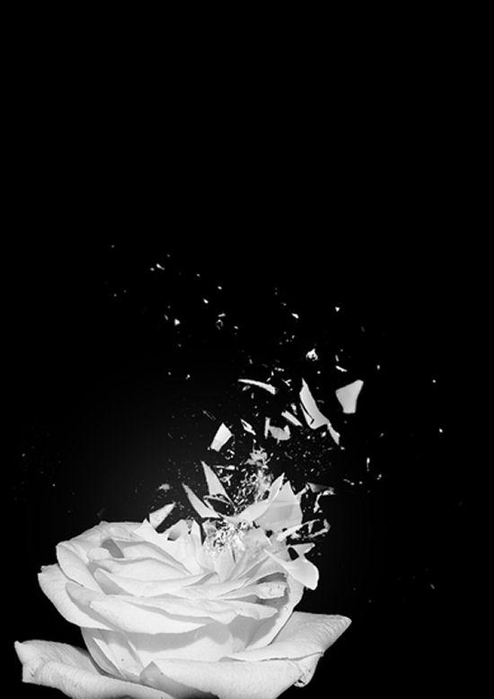 Innocence by Michela Monterosso