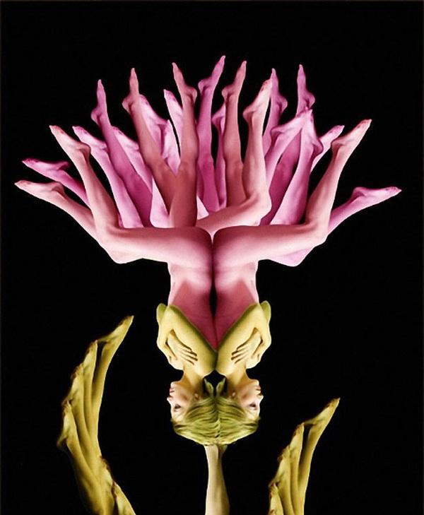Exciting metamorphoses of human body, an original idea from Cecelia Webber