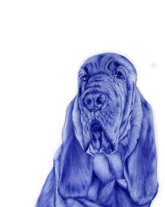Incredible Bic pen drawings by Sarah Esteje