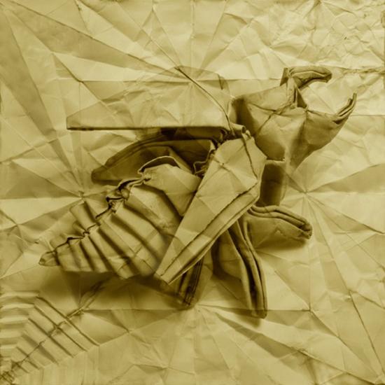 Origamis, superb series by Marc Fichou