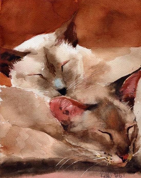 Siamese watercolor by Rachel Parker