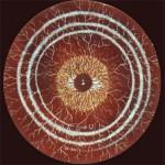Mr. Pan[k]sament & Oedip Piaf – Snakes And Sedatives