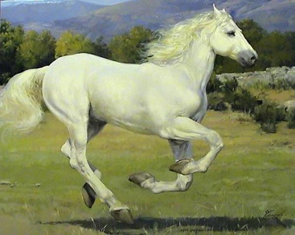 Yuri Yarosh, paintings