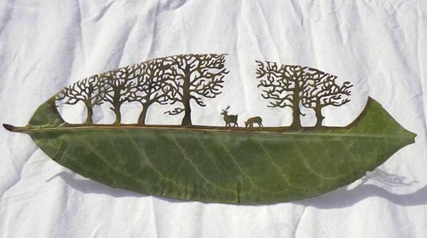 Leaf cut art by Lorenzo Manuel Durán