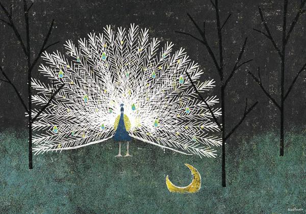 Akira Kusaka, illustration