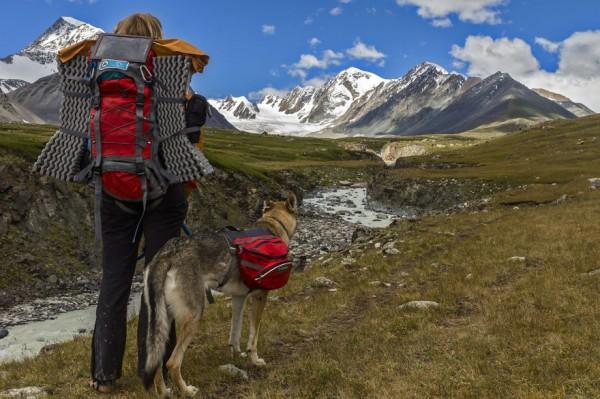 Dream travel with Diuna