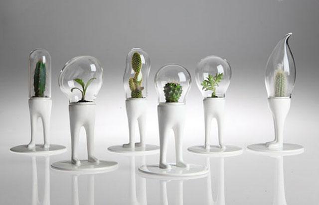 Funny Creative Terrariums