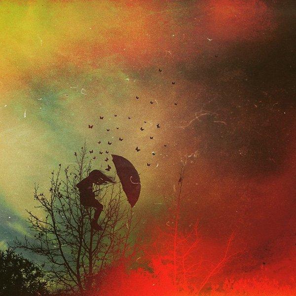 Ali Jardine, photography