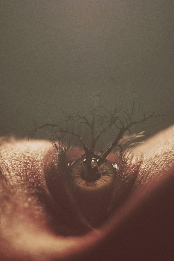 Eyes, photo manipulation by Nevan Doyle