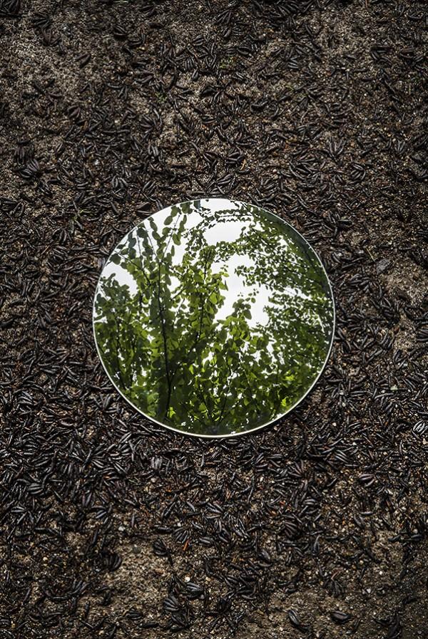 Reflections, photography by Sebastian Magnani