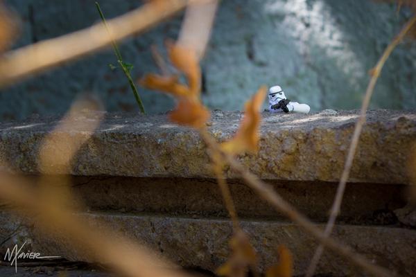 Férias de Trooper, photography by Maurício Xavier