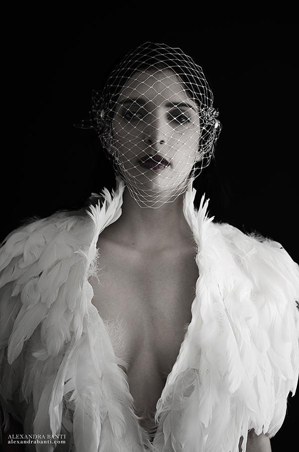 Birdcage, photography by Alexandra Banti