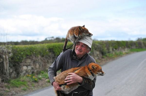 Patsy Gibbons, fantastic Mr. Fox