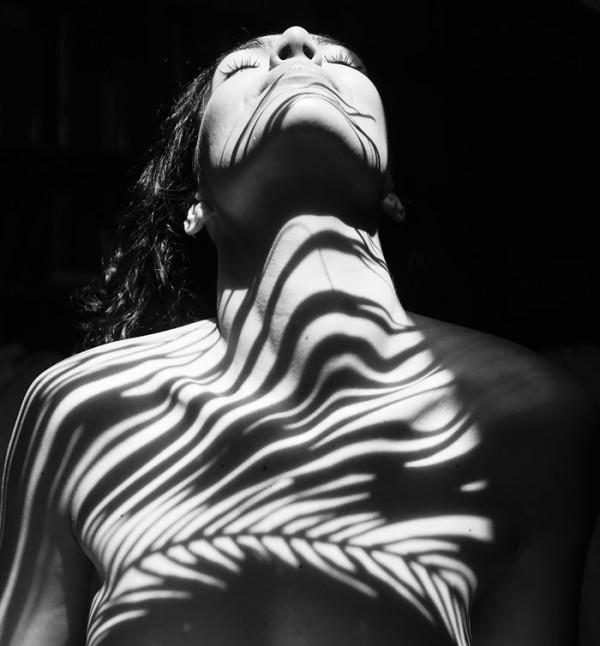 Natural Wild Anatomy, stunning visual compositions by Emilio Jiménez