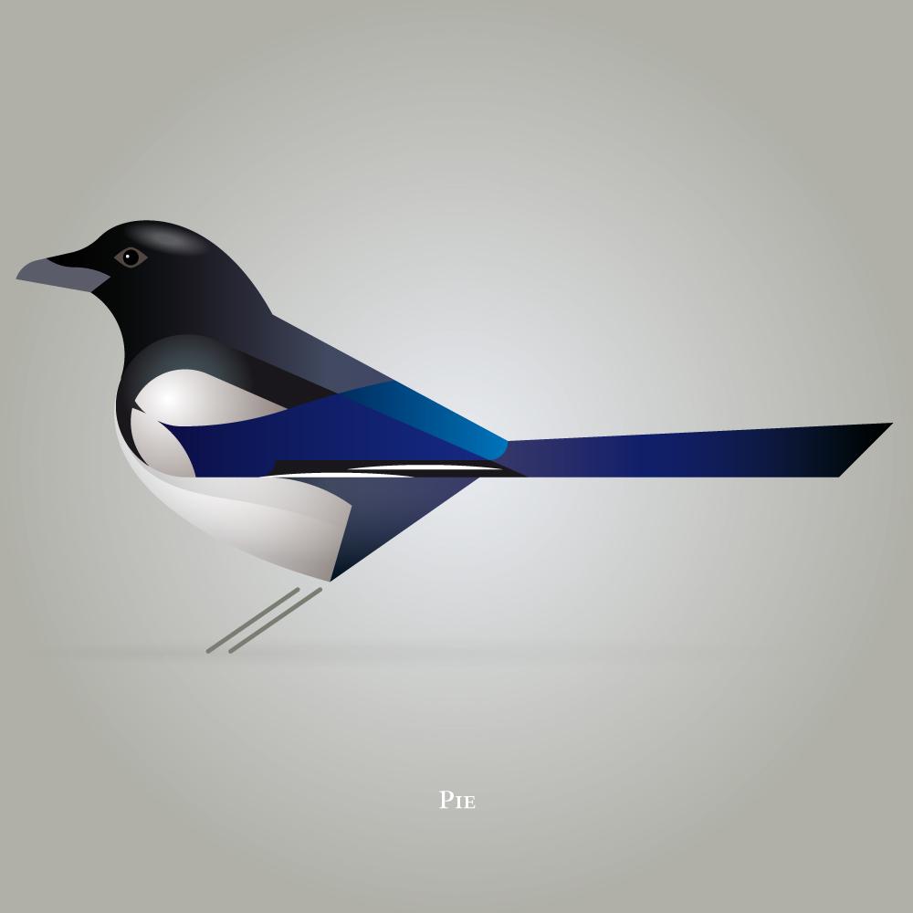 Birds, illustration by Vincent Helye