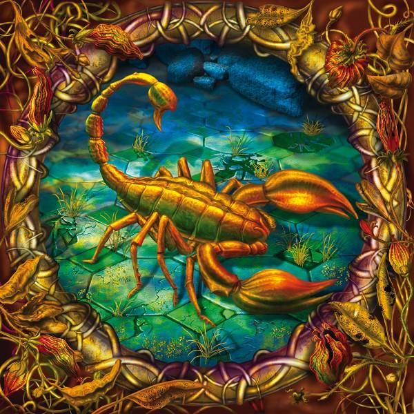 Zodiac, illustration by Dariusz Slawski