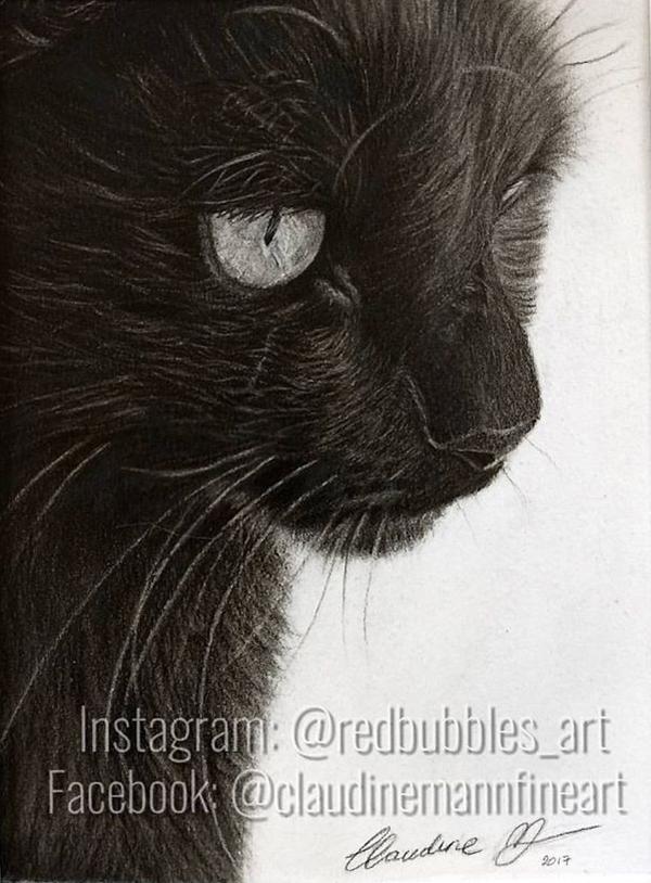 Claudine Mann, drawings
