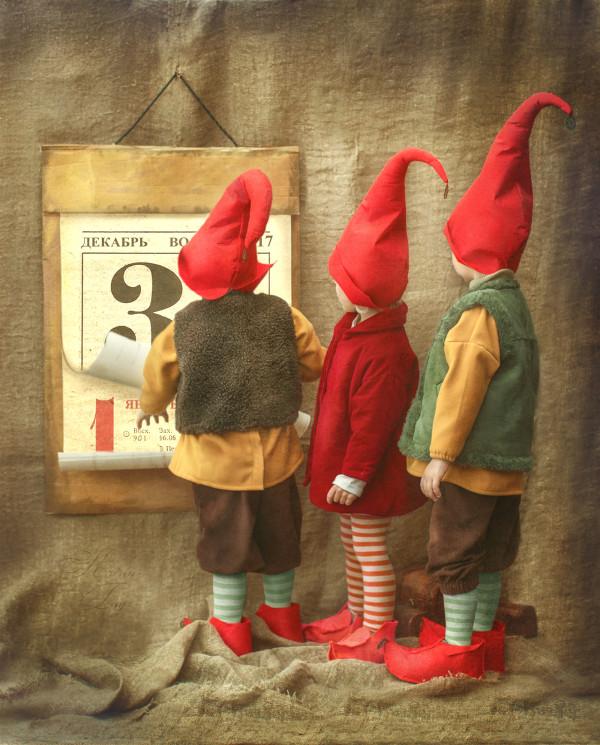 Gnomes, photography by Katrin Tug