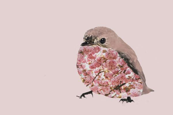 A walk through the seasons, digital art by Fabiana Meloni