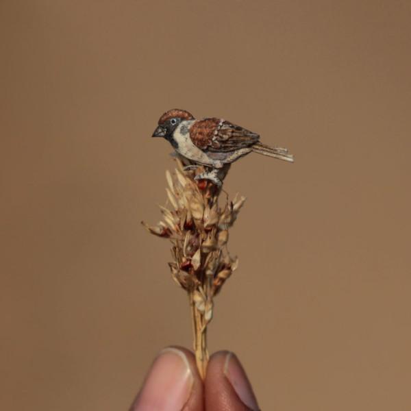 Miniature birds, paper art by Nayan & Vaishali