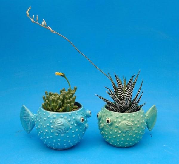 Playful pots turn air plants into adorable ocean creatures