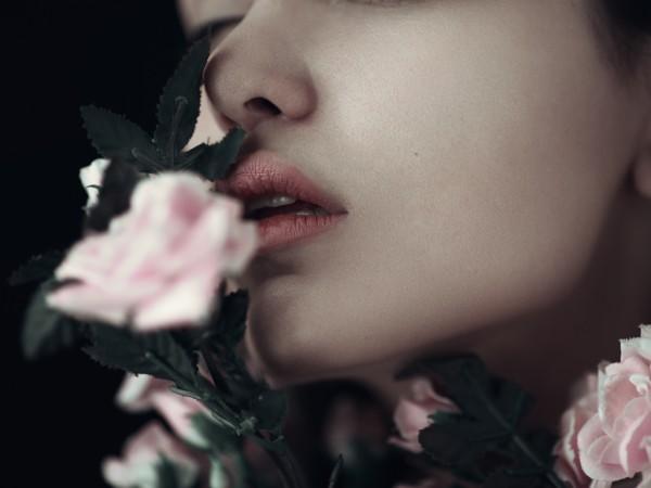 Fake Flowers, photography by Babak Fatholahi