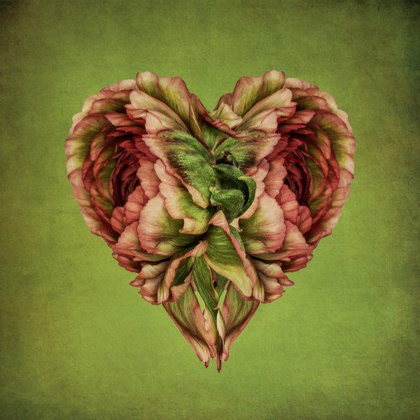 Flower Hearts, digital photography by Bettina Güber