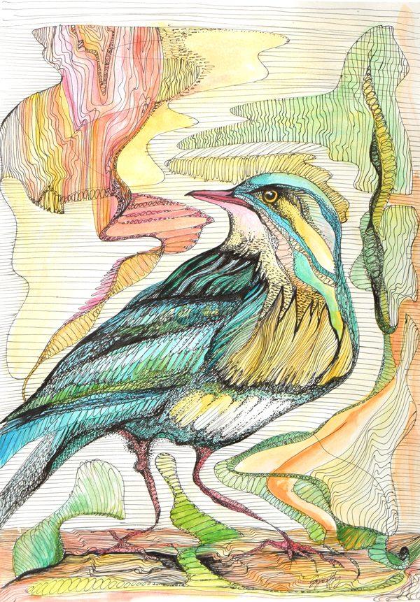 Illustration by Orsolya Gyorffy