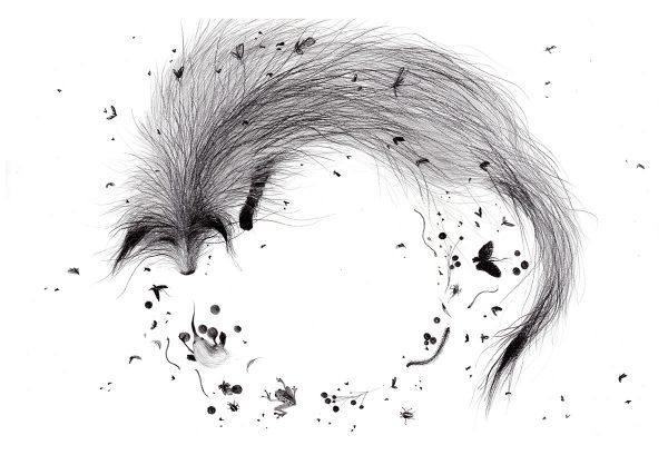 Espíritu del bosque, illustration by Christa Soriano