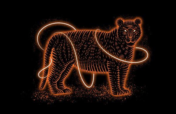 Felidae, illustration by Victor Sukhochev