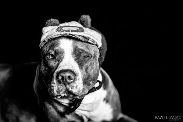 Ola - portrait, photography by Pawel Zajac